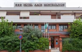 Hotel Monteolivos Sevilla
